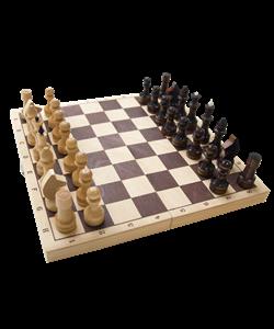 Шахматы обиходные, лакированные - фото 43494