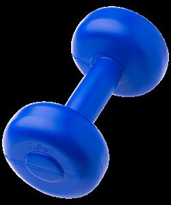 Гантель пластиковая литая Prosport, 2 шт. по - фото 43628