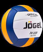 Мяч волейбольный JV-220