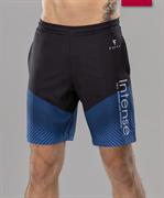 Мужские спортивные текстильные шорты Intense FA-MS-0104, принт синий