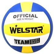 Мяч волейбольный Welstar VLPU4411A р.5